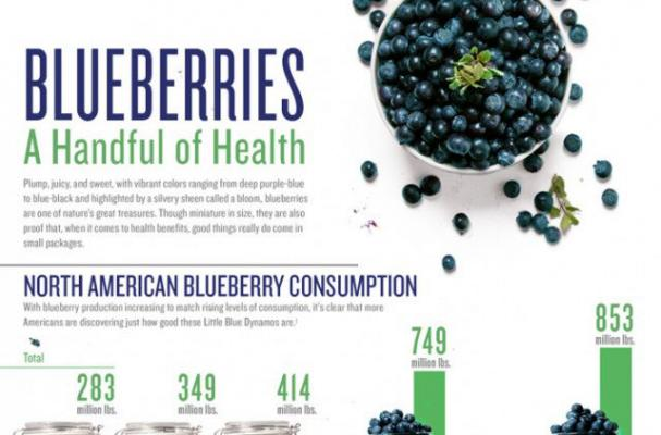 Infographic: Everything You Need to Know About Blueberries
