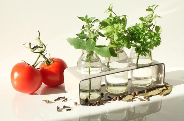 fresh herbs and tomatoes